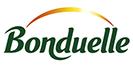 online solutions-woopy media-bonduelle